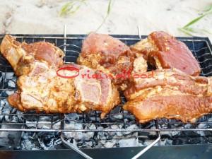 rebrishki-piknik (8)